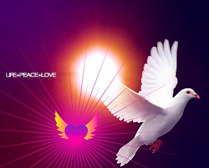 Life+Peace+Love-t