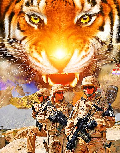 Croatia-Army-Like-a-Tiger
